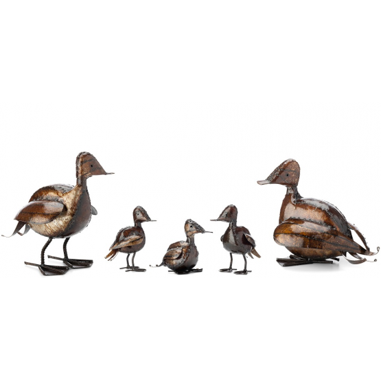 Family of Ducks