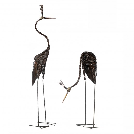 Goliath Crowned Crane